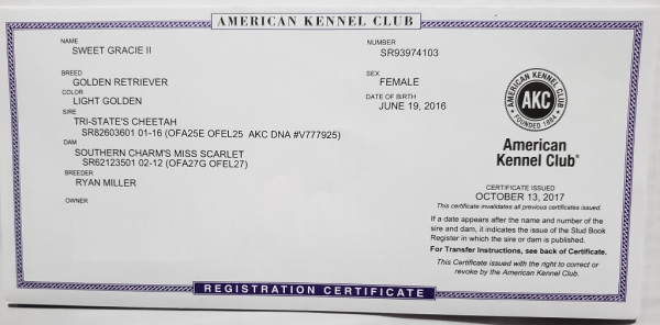 Akc Registration Certificate