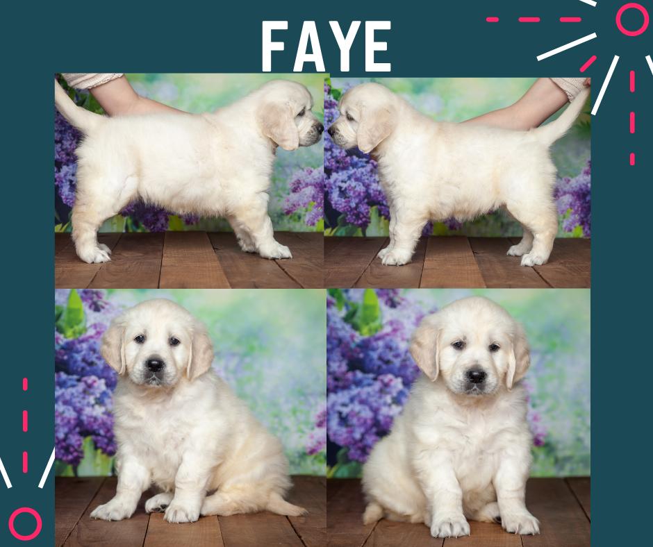 Faye by Izum & Lilly March 4 2021